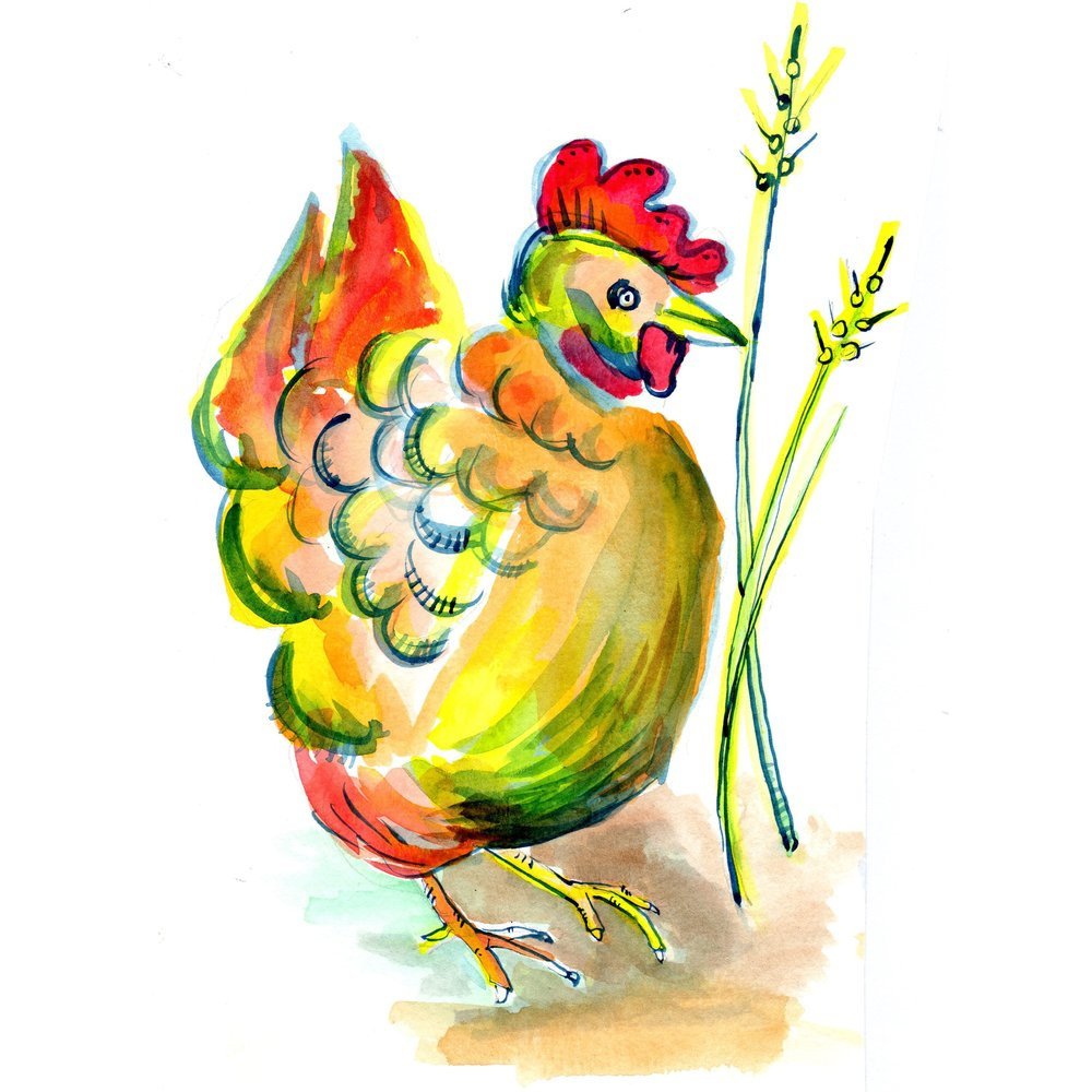 Hen and grass.jpg