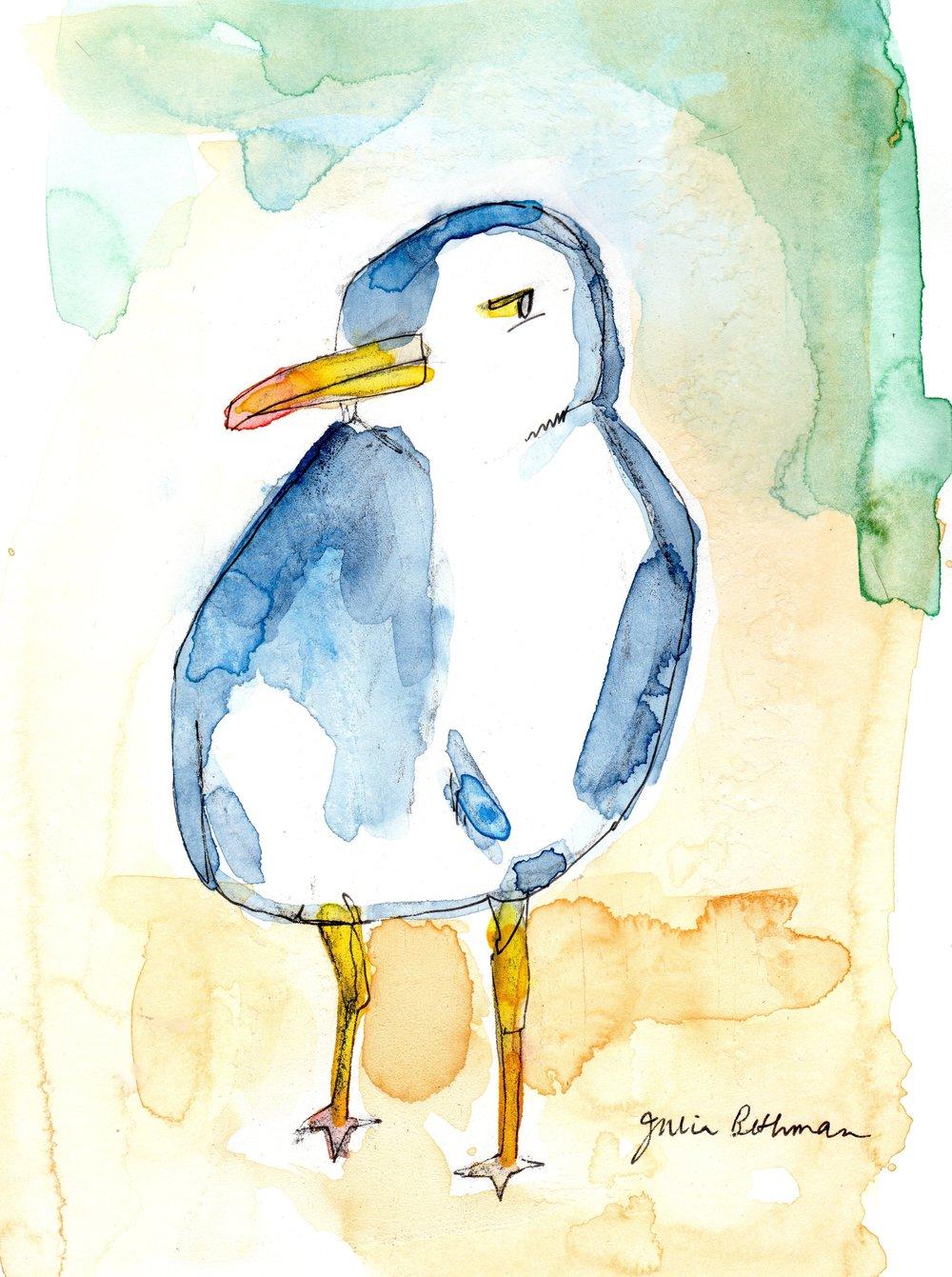 Seagull 1-8-19.jpg