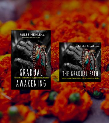 The Gradual Awakening book &The Gradual Path audio meditations.