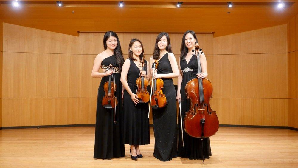 LVER Strings Profile pic 2.jpg