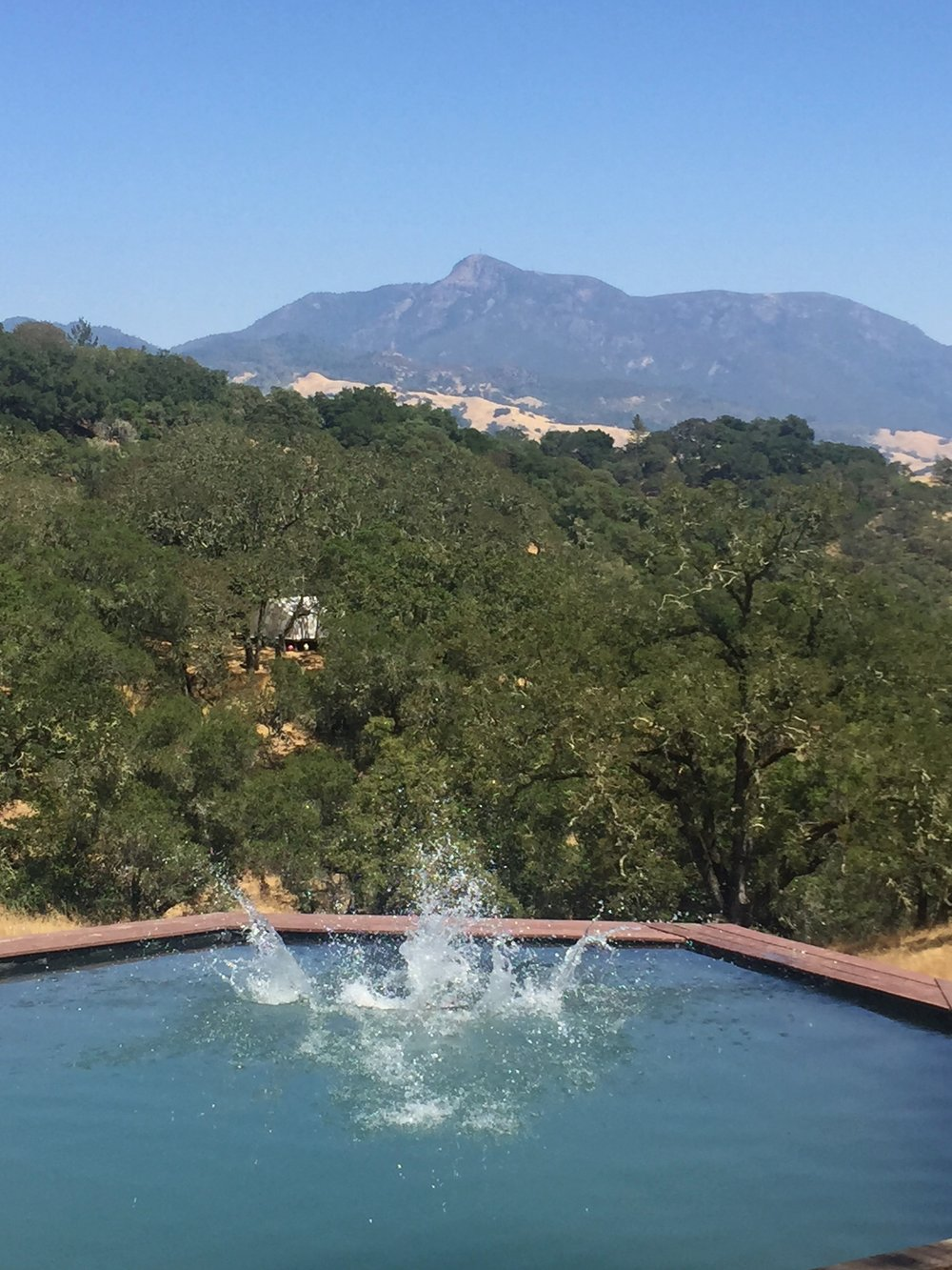 Dipping Pool at Glamping Retreat Sindisa Sanctuary