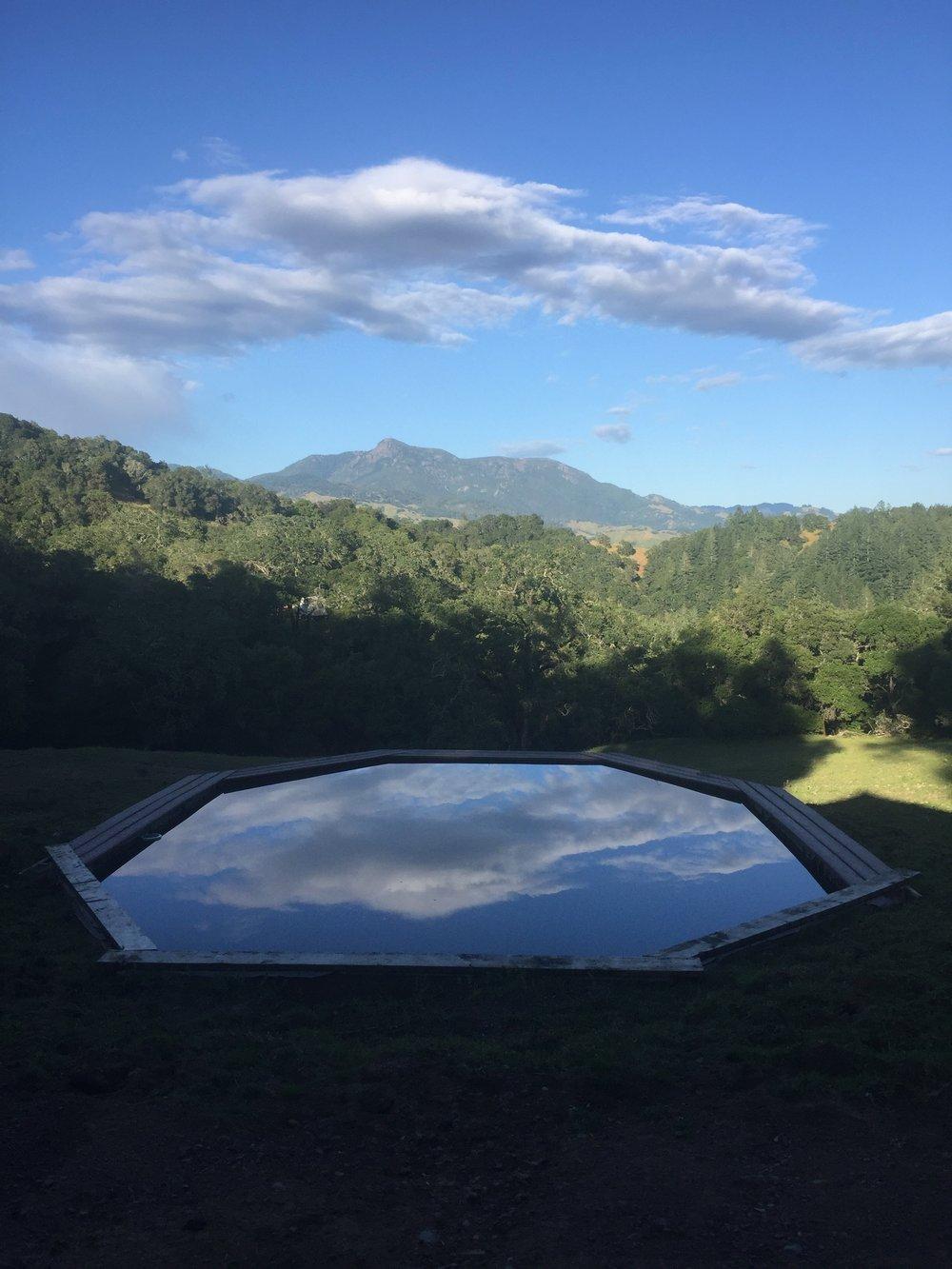 Northern California's Best Glamping Getaway at Sindisa Sanctuary