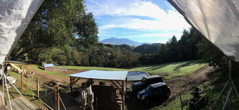 Visit Sindisa Sanctuary, Northern California's Best Glamping Getaway in Wine Country
