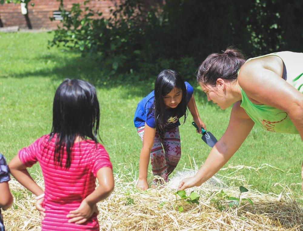 SeedFork of The Highlands Community Garden Network