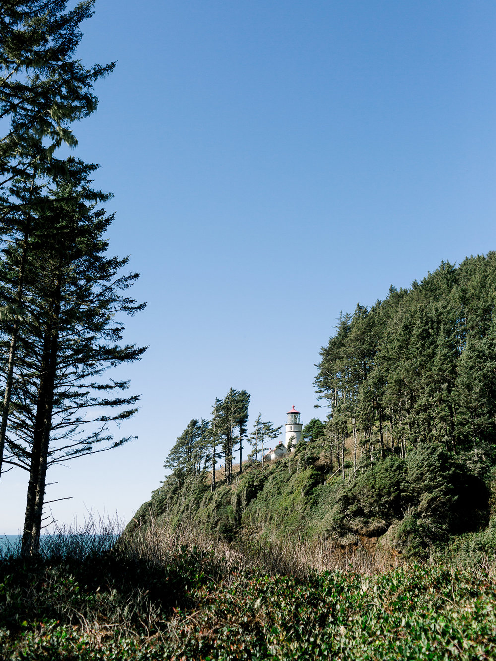 3-2 Coastal Bliss-0009.jpg