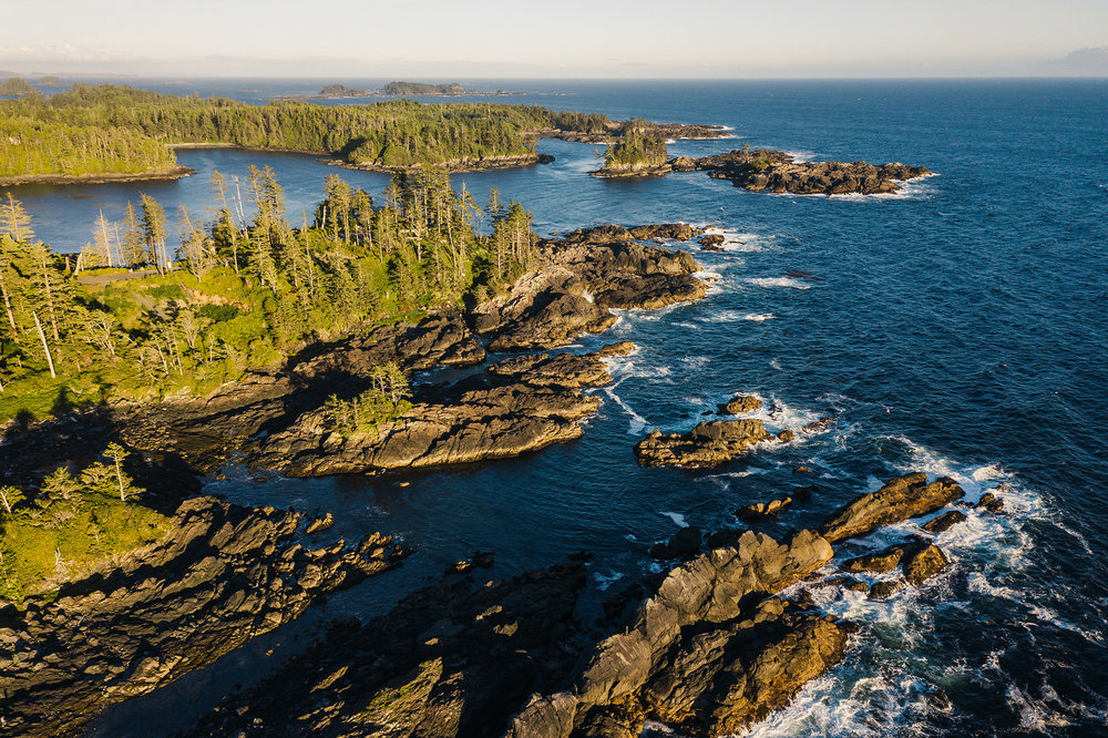 Ucluelet Coves