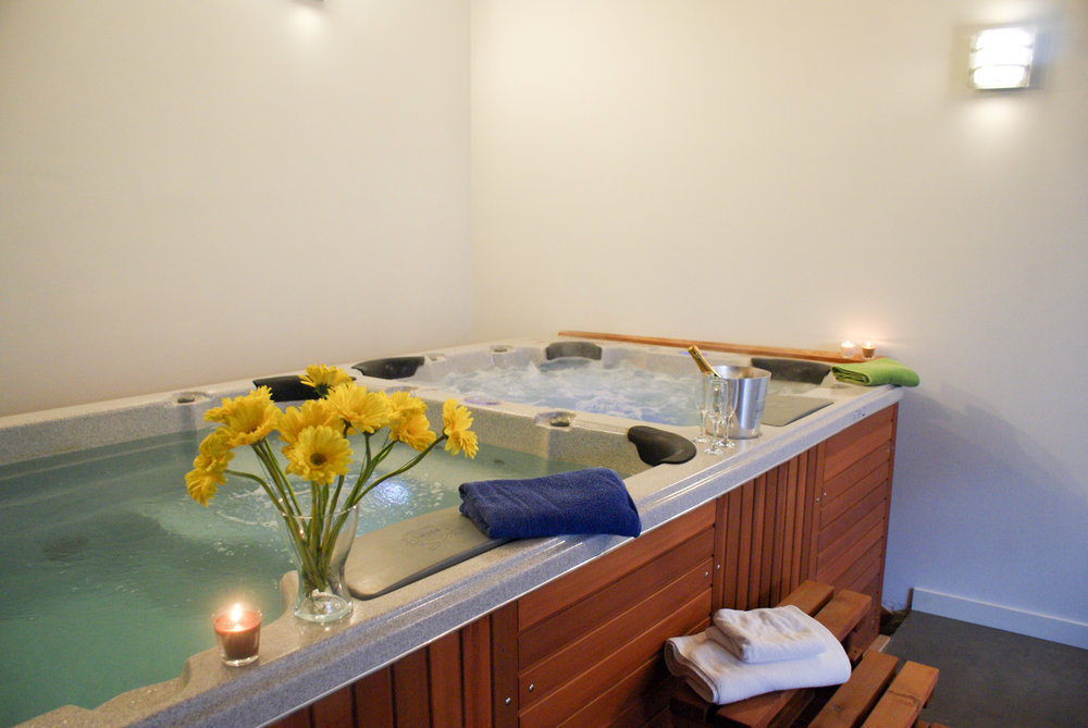 Swim Spa  - A swim spa and fitness room with professional equipment.
