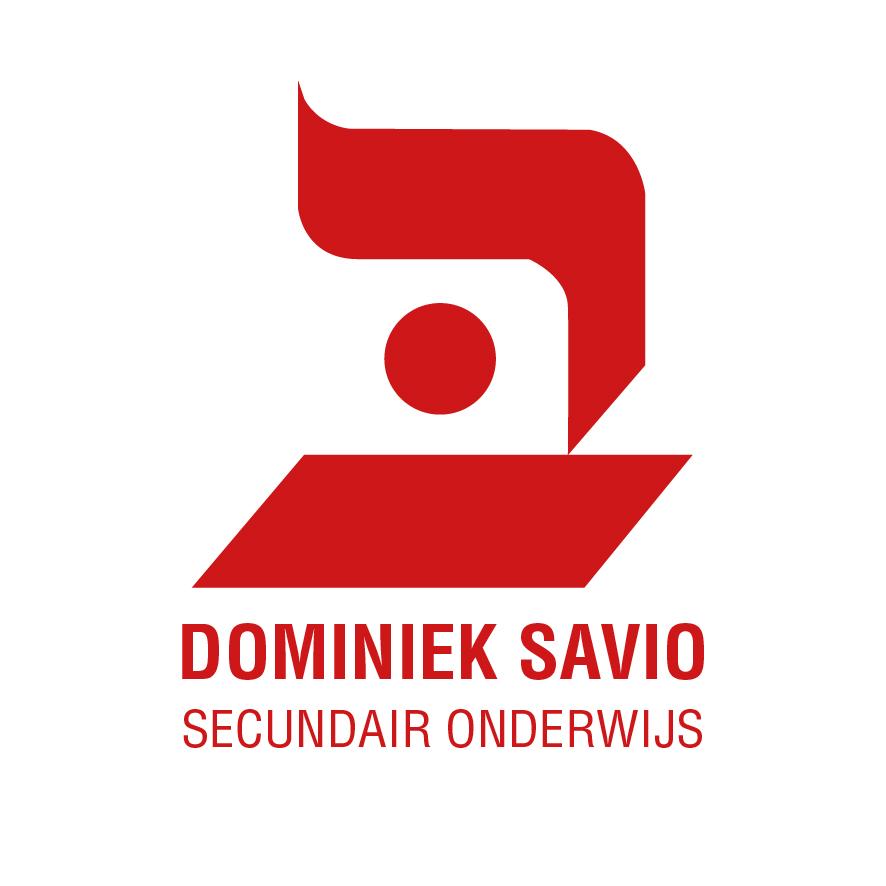 DSI ONDERWIJS_ Secundair.jpg