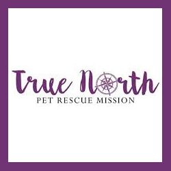 True North Rescue Mission  New York, New York  www.truenorthrescue.org   @truenorthrescuemission