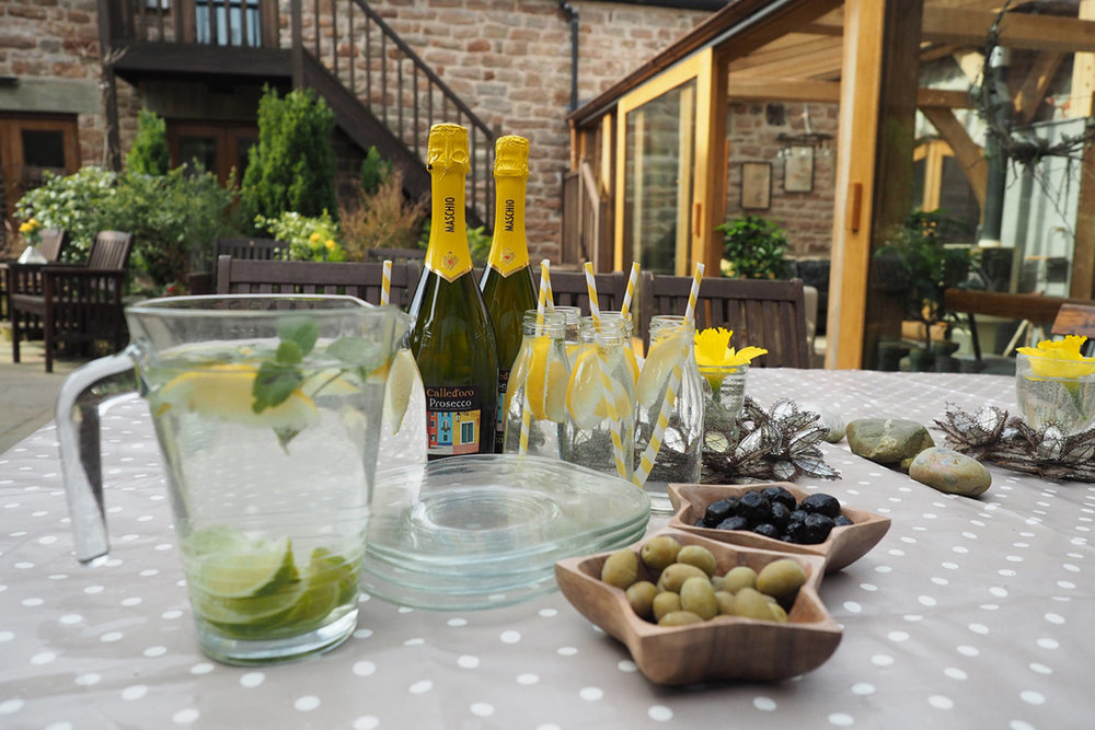 garden w prosecco and olives (14).jpg