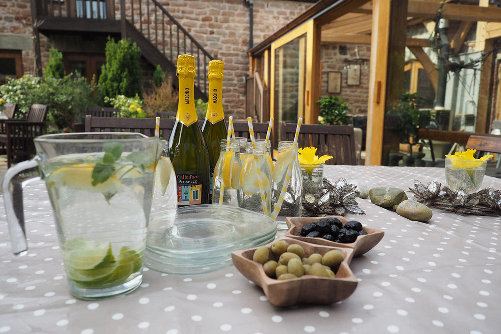 garden w prosecco and olives (13).jpg