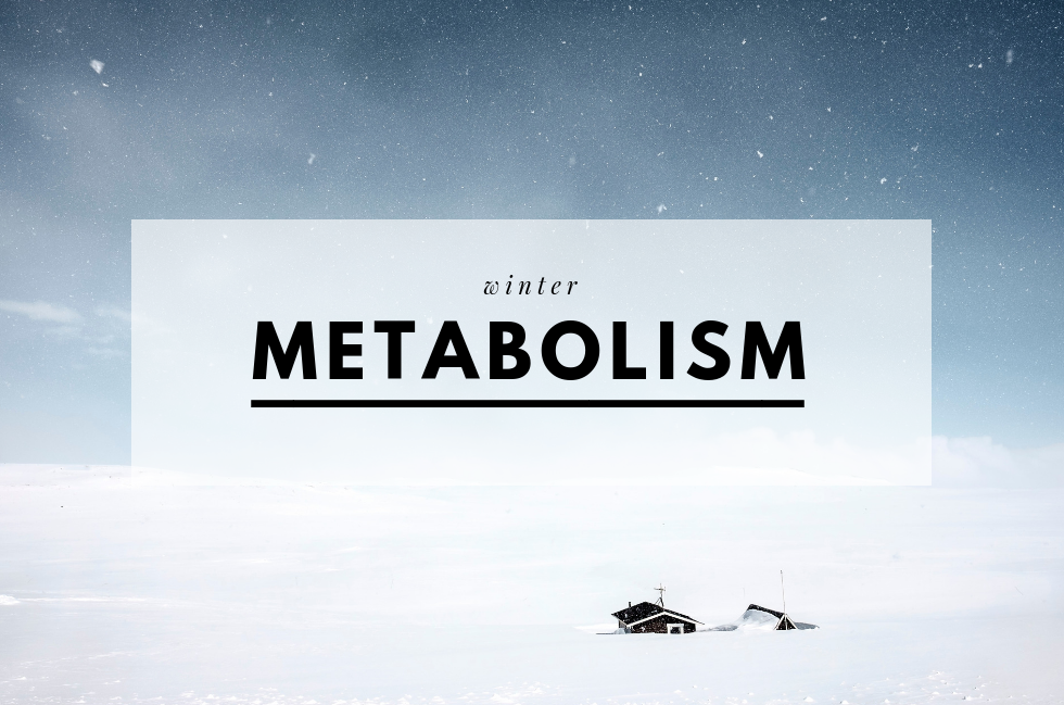 winter-metabolism.png