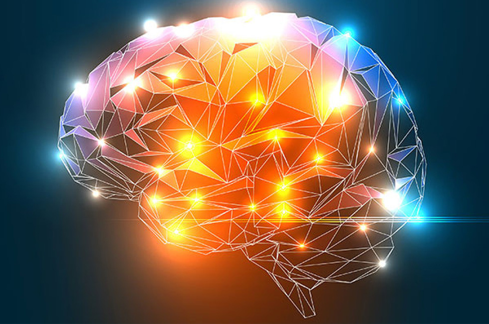 Protect your brain. - Symptoms such as anxiety, hot flushes, night sweats, depression and broken sleep originate in the brain. This program is designed to protect and enhance brain health, reversing symptoms and preventing cognitive decline in later years.