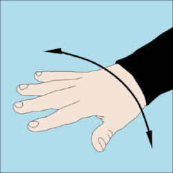600px-Dive_hand_signal_Not_Right.png