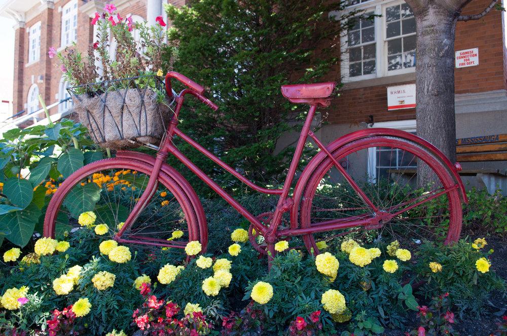 PC_Bike.jpg