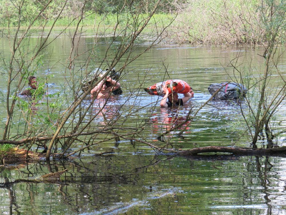 Sumpfdurchquerung beim Outdoor Training