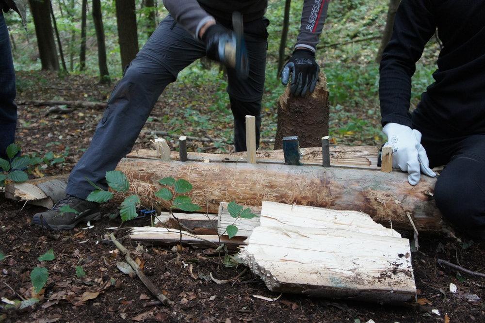 Spalten von Holz