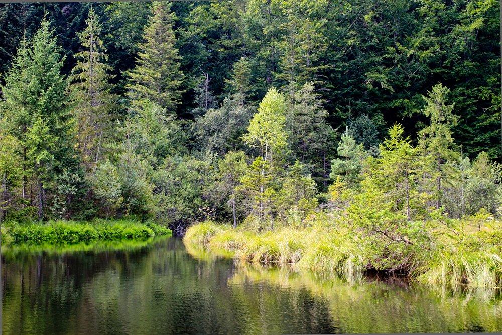 mountain-lake-930272.jpg