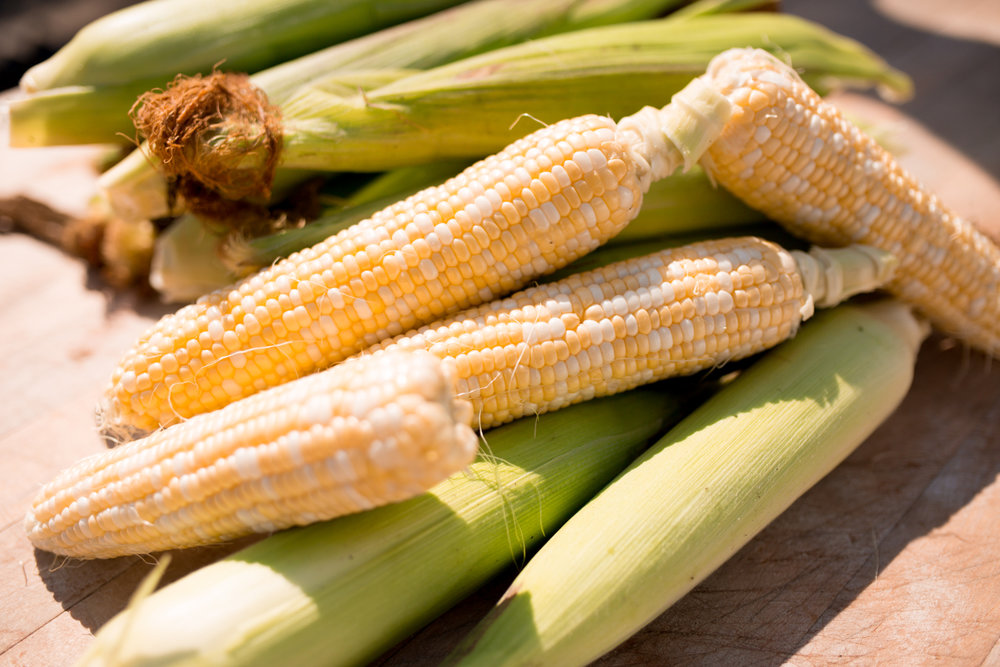 Corn is a vegetable, a grain and a fruit. The whole cob of corn is a vegetable. The kernels are a grain and, because we eat the seed, it's a fruit too!