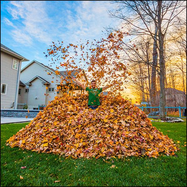 2016-11-15 - Leaf Pile_0023-dualiso-1.jpg