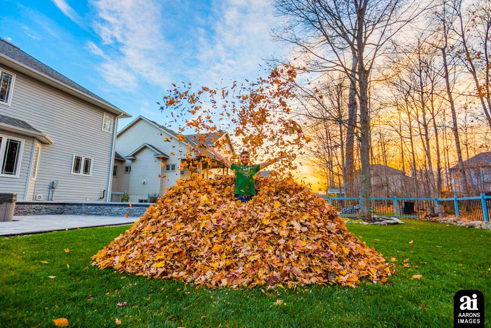 2016-11-15 - Leaf Pile_0023-dualiso.jpg