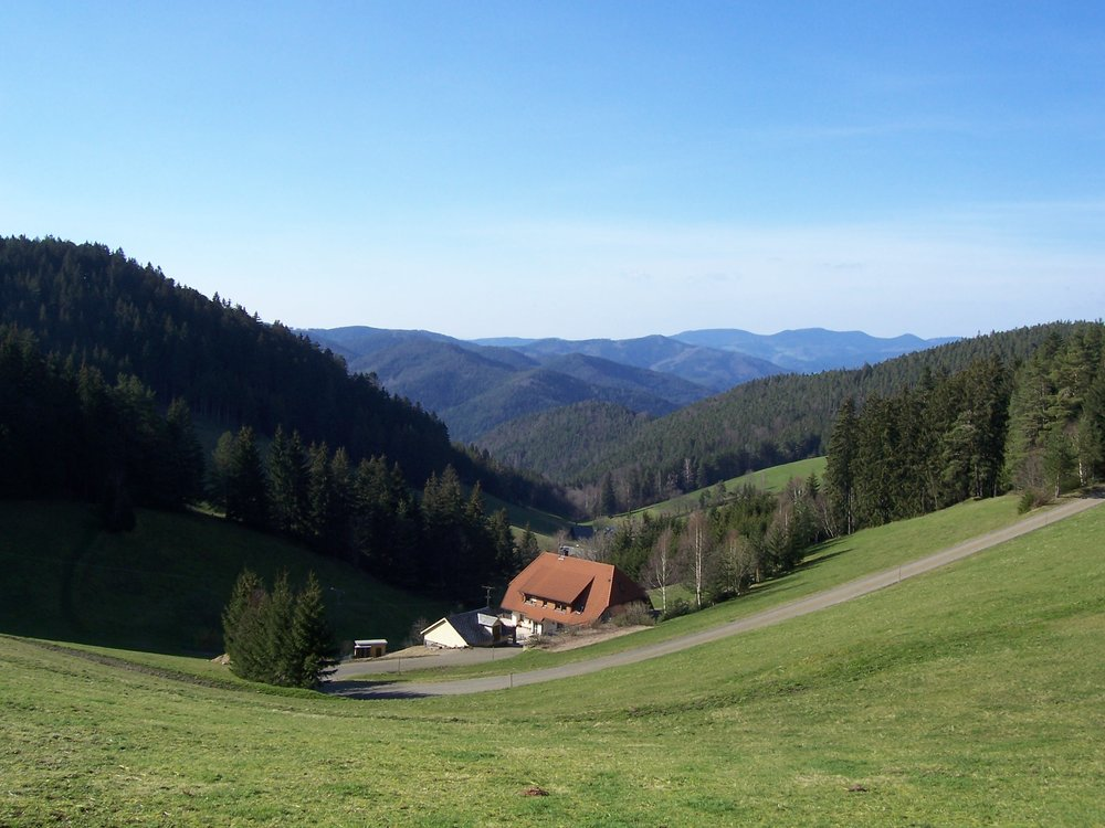 Scenic view in the Black Forest - where cuckoos come from.
