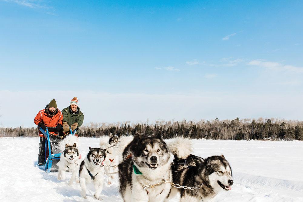 dog-sledding50.jpg