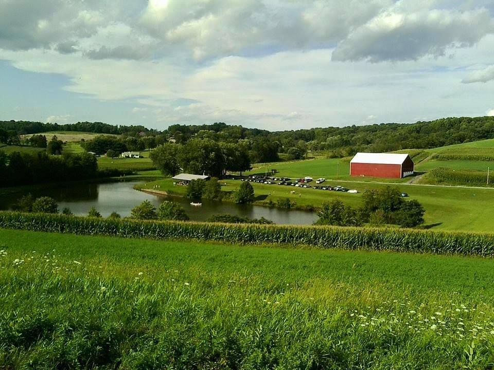 Turner's Farm.jpg