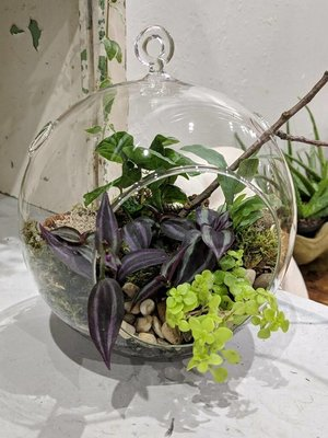 Globe Terrarium Class at South Egremont Spirit Shoppe