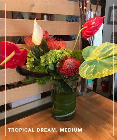 Tulips, Tropicals & Terrariums - Tulip Round $50Tropical Dreamorchids, ginger, protea/anthuriumsmall $50medium $75large $100extra-large $150Terrarium $50+Custom Arrangement $35+The Big One - Designer's Choice of Flowers $250Looking for something simpler?We're happy to work within your budget.Contact us at 413-347-3422 for details & to order.