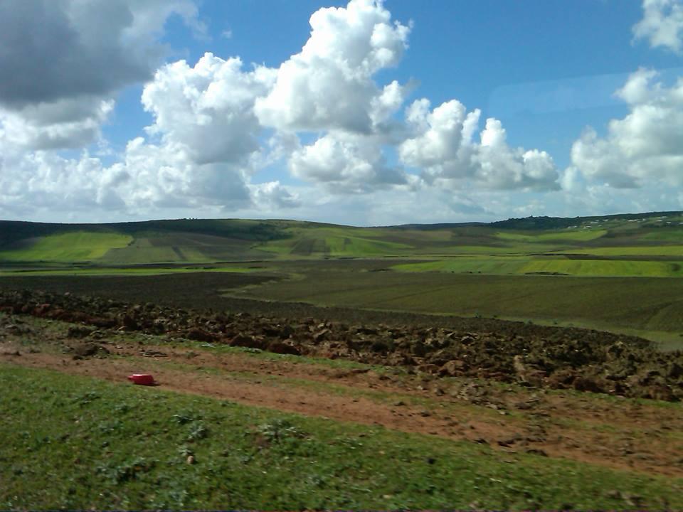 Moroccan farmland.