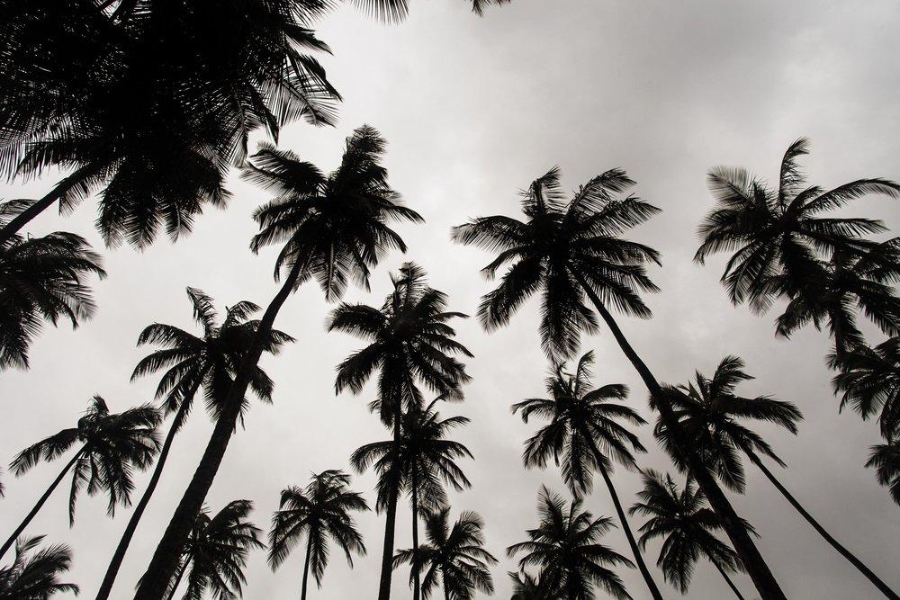 Monrovia, Liberia.