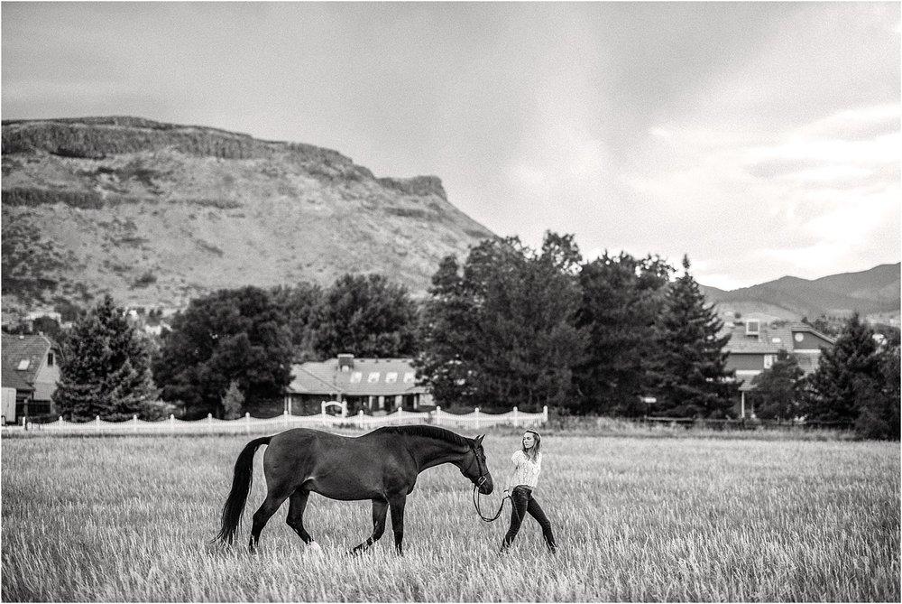 Limbo_Blog_Stomp_Horse_Photography_Equine_Warmblood_Portraits_002.jpg
