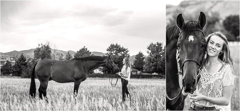 Limbo_Blog_Stomp_Horse_Photography_Equine_Warmblood_Portraits_003.jpg