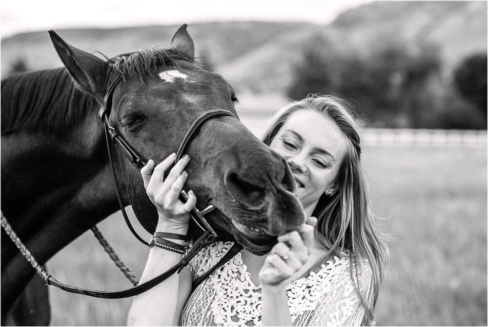 Limbo_Blog_Stomp_Horse_Photography_Equine_Warmblood_Portraits_004.jpg