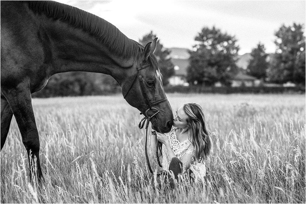 Limbo_Blog_Stomp_Horse_Photography_Equine_Warmblood_Portraits_007.jpg