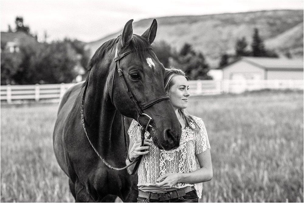 Limbo_Blog_Stomp_Horse_Photography_Equine_Warmblood_Portraits_008.jpg