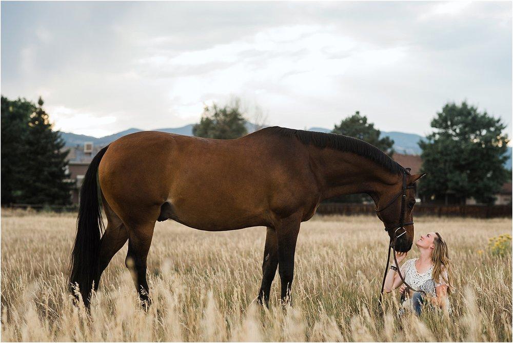 Limbo_Blog_Stomp_Horse_Photography_Equine_Warmblood_Portraits_011.jpg