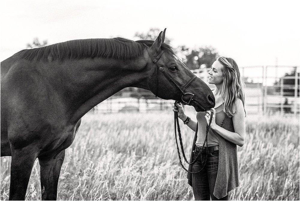Limbo_Blog_Stomp_Horse_Photography_Equine_Warmblood_Portraits_021.jpg