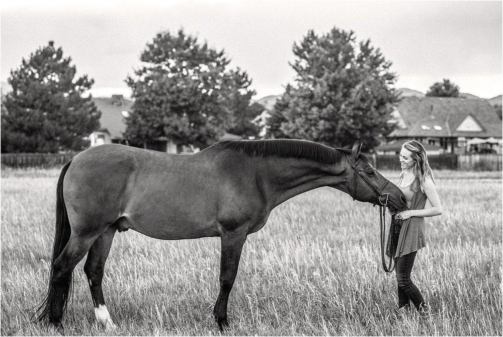 Limbo_Blog_Stomp_Horse_Photography_Equine_Warmblood_Portraits_022.jpg