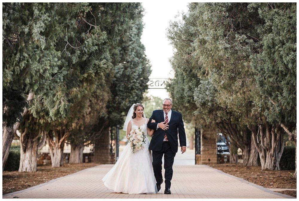 Highlands_Ranch_Mansion_Colorado_Wedding_Photographer_Harry_Potter_Themed_Weddings_Apollo_Fields_013.jpg