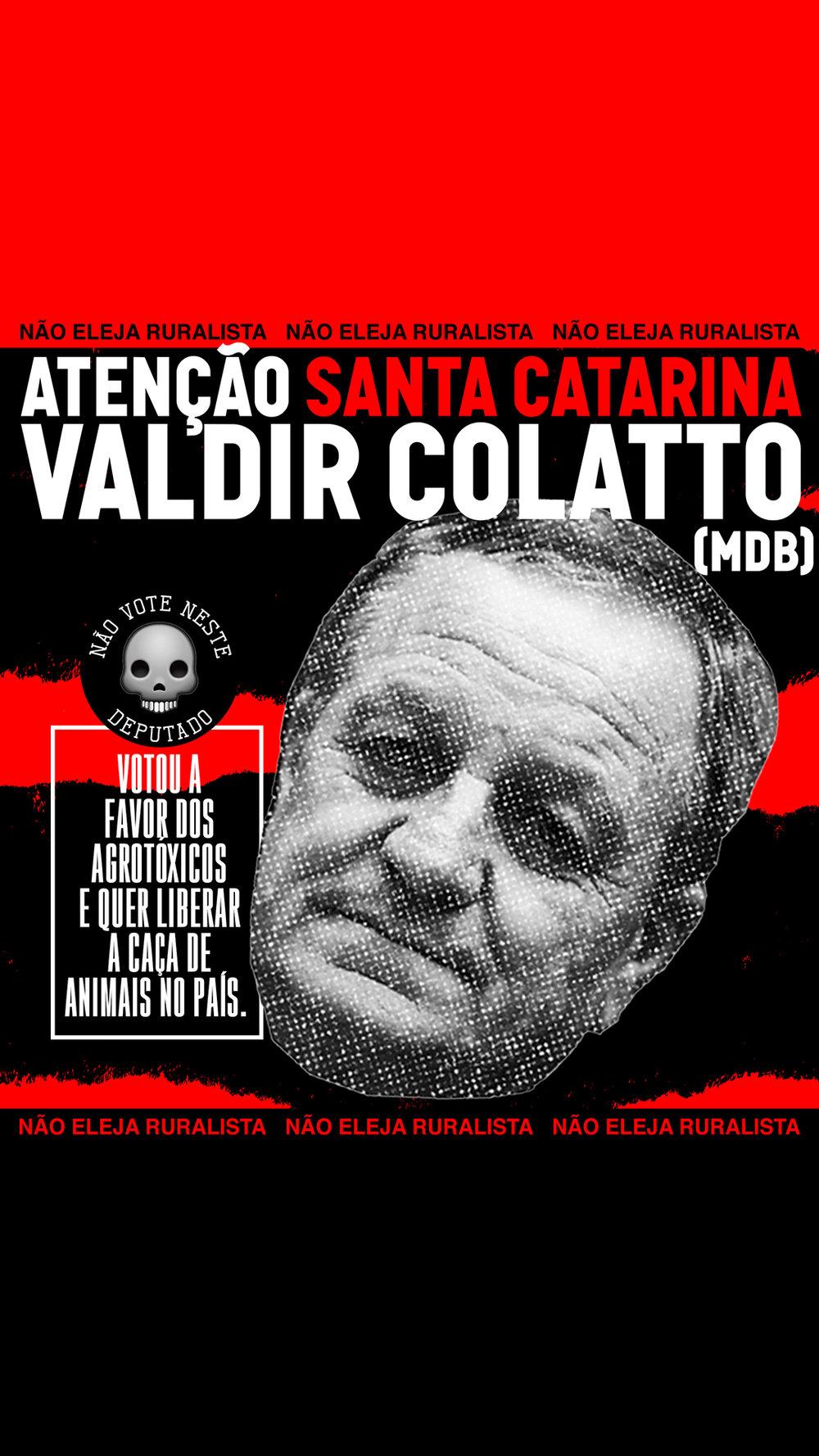 stories_nao_eleja_RURALISTAS_SC_Colatto.jpg