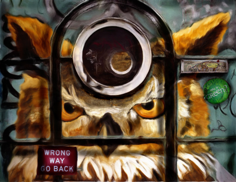 Fonda Haight - owl jail - Copy.jpg