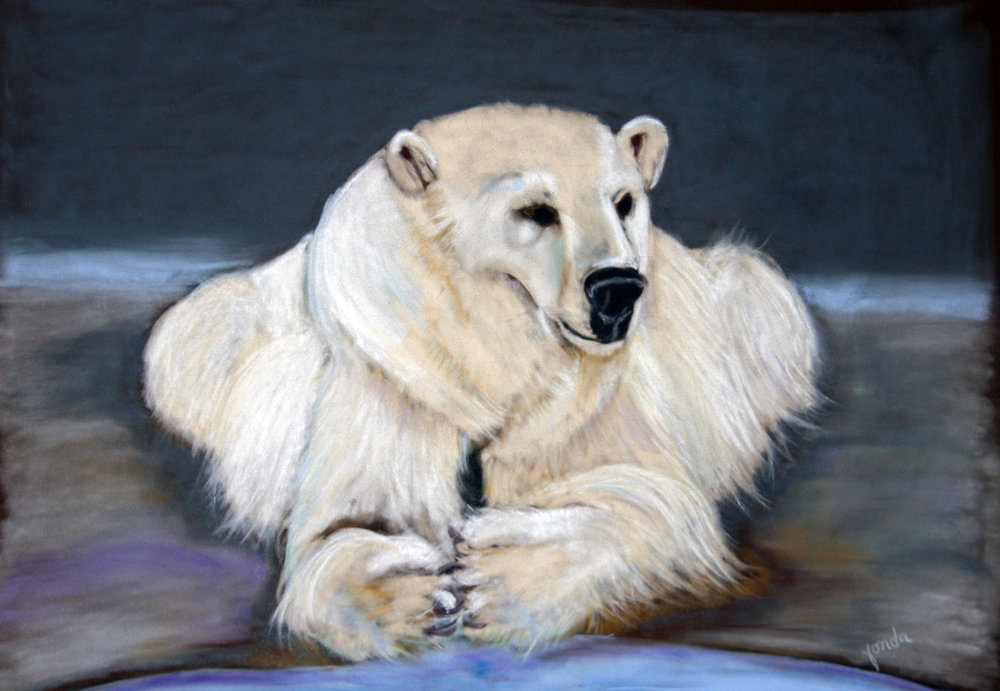 Fonda Haight - polar bear picture.jpg