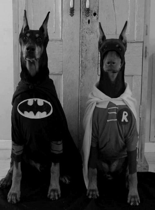 Found-Superheroes.jpg
