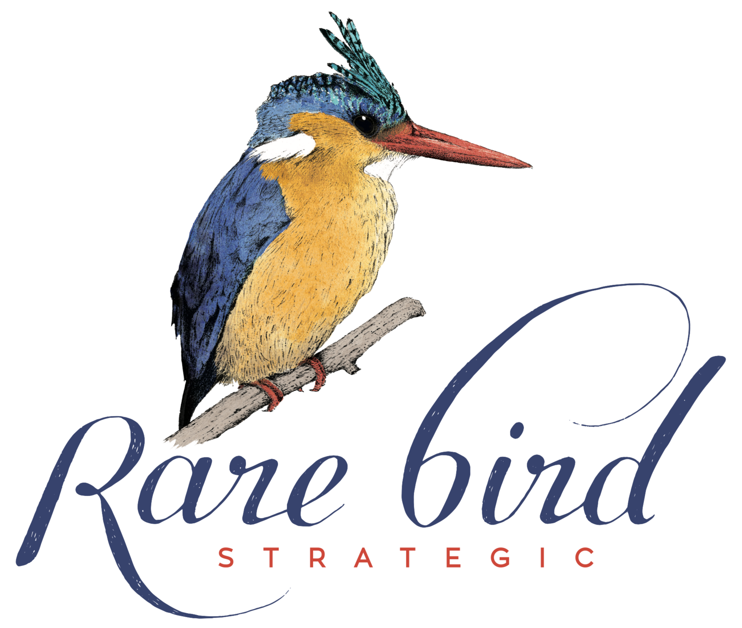 Rare Bird Strategic