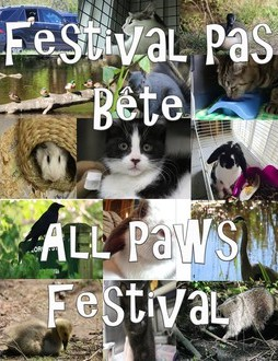 All Paws Film Festival