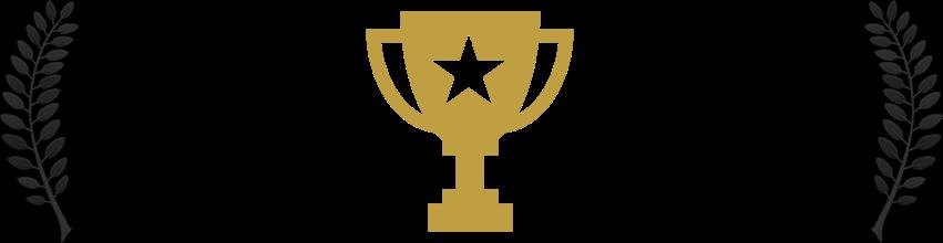 Bronze Award - Editing • FictionTIVA Peer Awards 2018