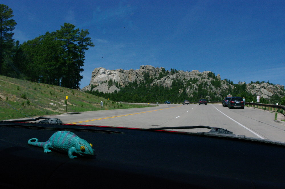 Driving up to the monument (and Gus, our dashboard companion)