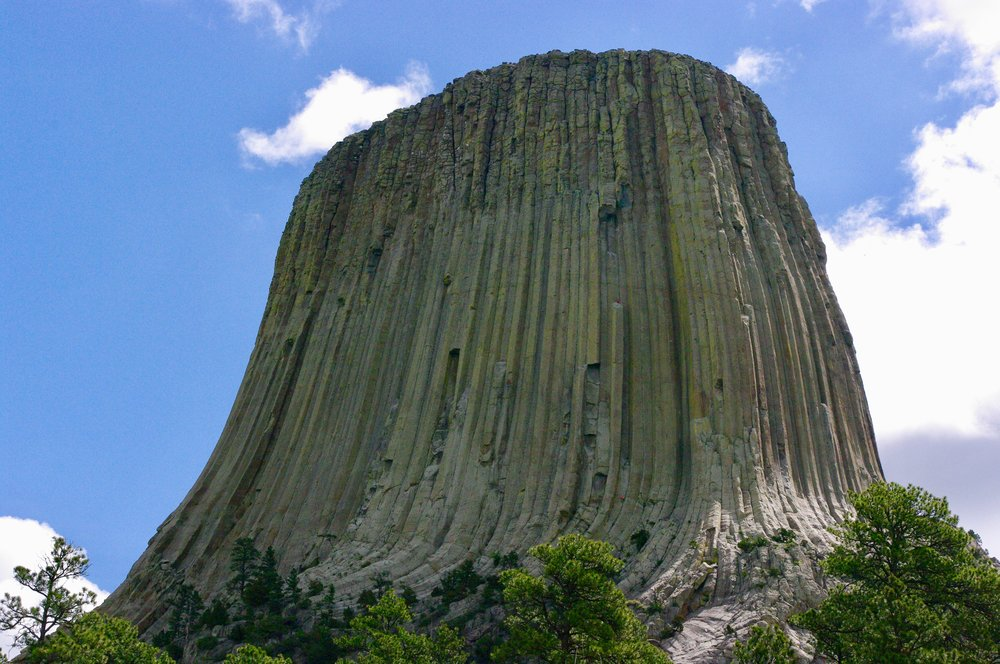 Devil's Tower (if you look closely you can see some climbers on the butte)
